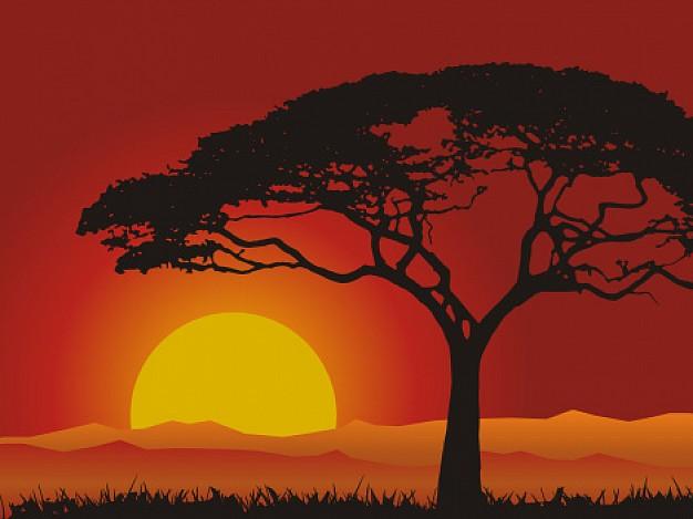 puesta-de-sol-paisaje_8230
