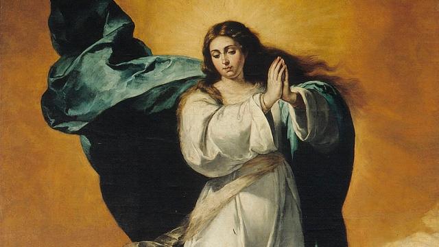 inmaculada-concepcion-web