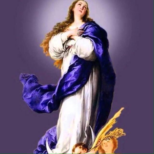 inmaculada-morado